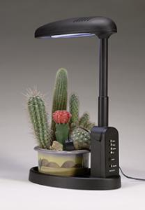 intelligent-plant-light-Cactus