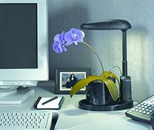 intelligent-plant-light-orchpurp